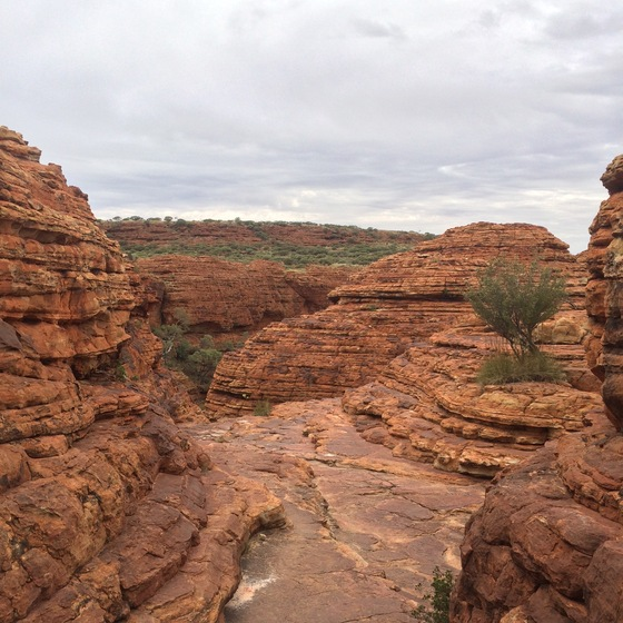 Australia - Kings Canyon - di ironino