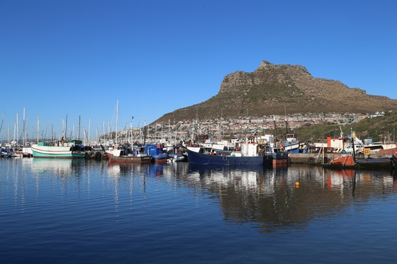 Sudafrica - hout bay - di travelwithbrothers