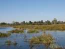 mamili national park - Caprivi