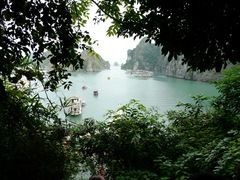 Ha Long Bay - Crociera