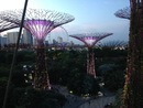 Garden by the Bay - Cultura