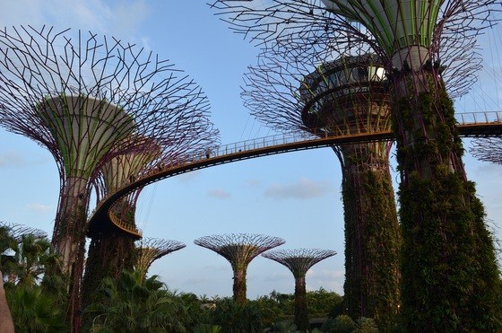 Cultura - Garden by the Bay - di LucaBene
