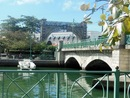 Bridgetown Barbados Chumberlain bridge - Cultura