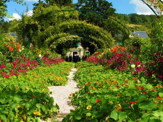Giverny - Tra i fiori a Giverny - di Littlebounches