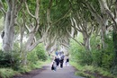 The dark Hedges - Irlanda