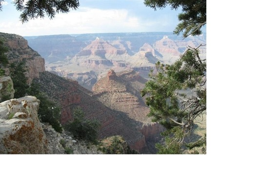 Los Angeles - Grand Canyon - California - di pesci