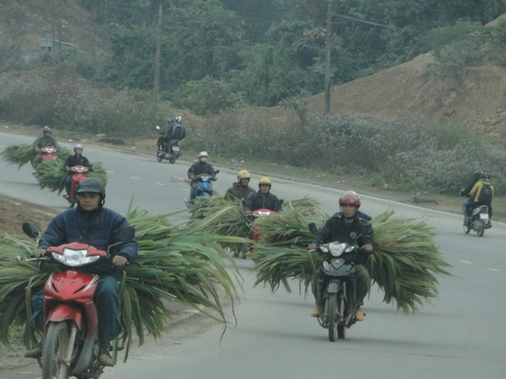Mekong - moto - on the road - di mrc1962