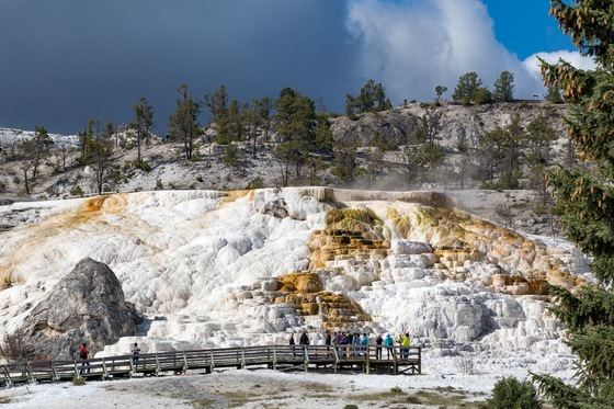 Montana - MInerva terrace - Mammoth Hot Springs - di balzax