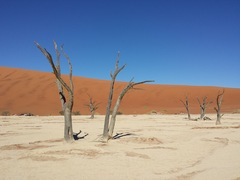 death valley, deserto del namib - Namibia