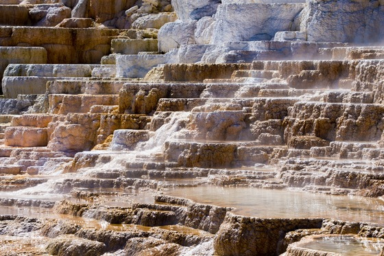 Parco Nazionale di Yellowstone - Minerva Terrace - Mammoth Hot Springs - di balzax
