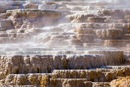 Sorgenti calde Mammoth Hot Springs - North Yellowstone - Parco Nazionale di Yellowstone
