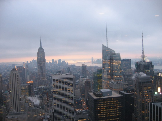 Stati Uniti d'America - Dal Top of the Rock - di ginepra