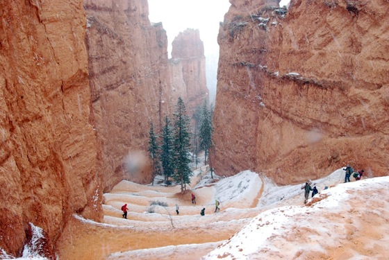 USA west coast - Bryce Canyon - di Pagio
