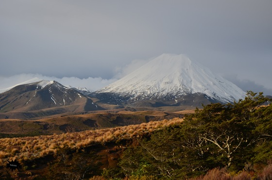 Viaggio on the road - Tongariro National Park - di Rudy72