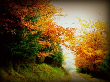 Autunno irlandese