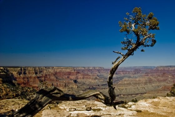 Grand Canyon - Colori del Grand Canyon - di fabiocanovi