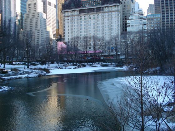 Stati Uniti d'America - winter in New York - di delpiero100