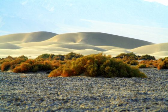 Death Valley - Dune di sabbia nella Death Valley - di Marco Caciolli