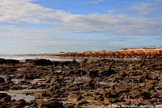 Broome - Looking the coast - di jiva